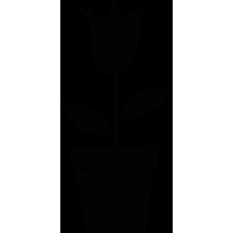 Vinilo maceta tulipán