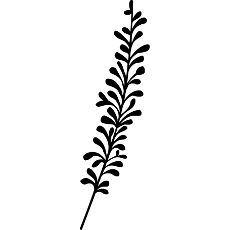 Vinilo planta lavanda